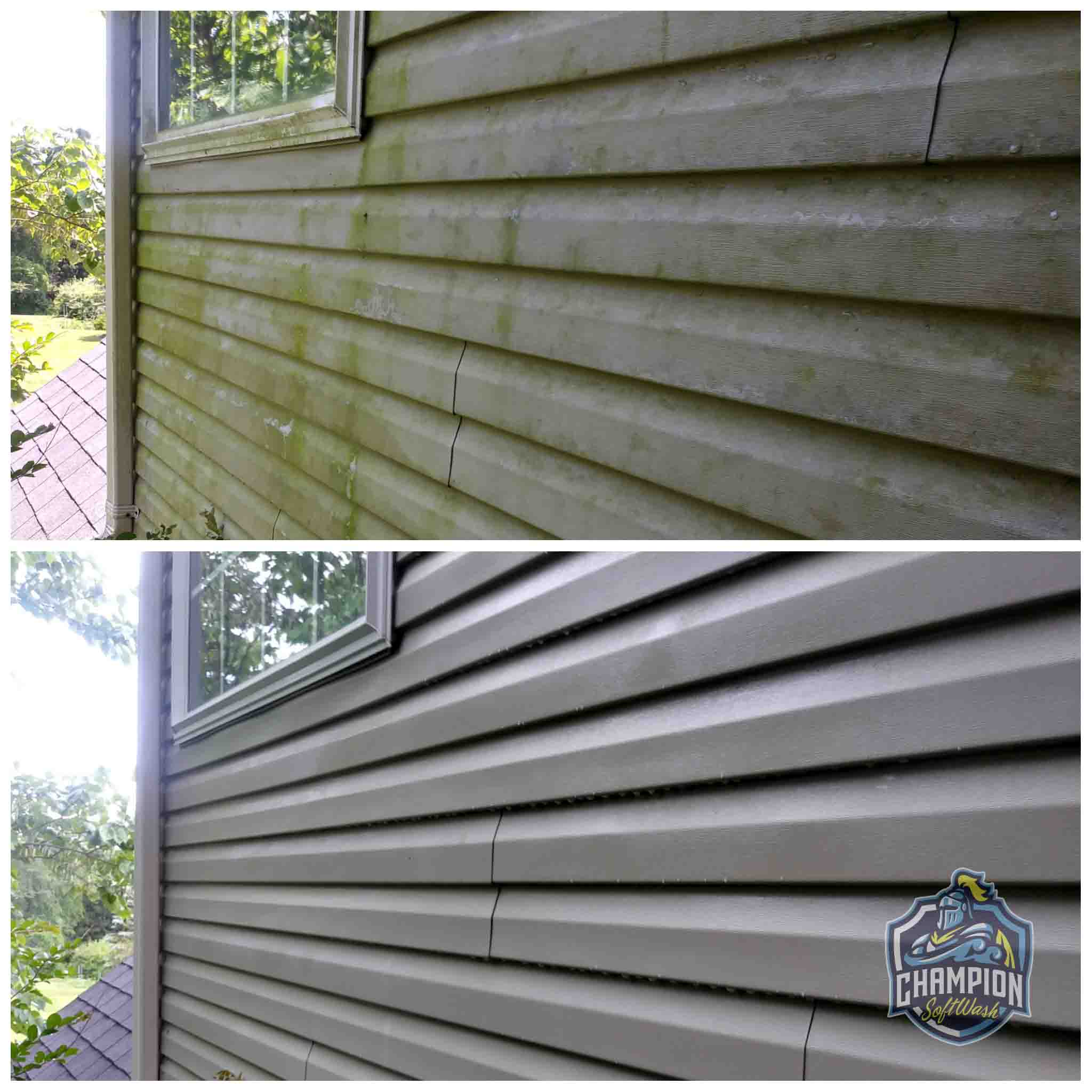 Vinyl siding cleaning, vinyl siding soft washing, vinyl siding pressure wash, house wash, algae removal
