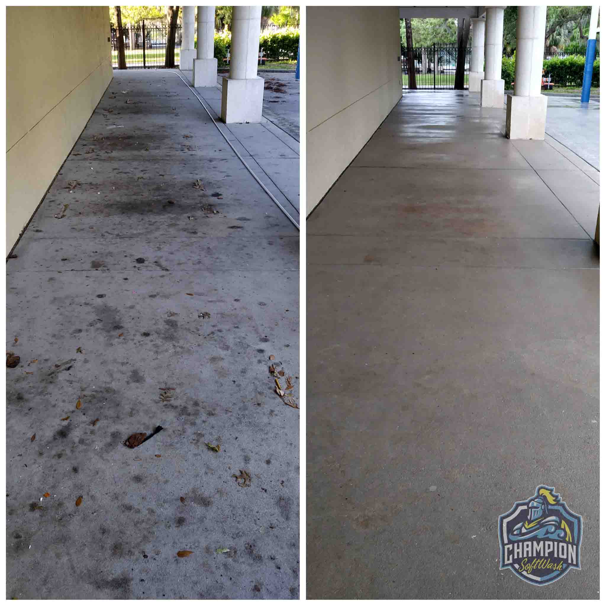 Before and After of Concrete Sidewalk Cleaning Pressure washer washing softwashing