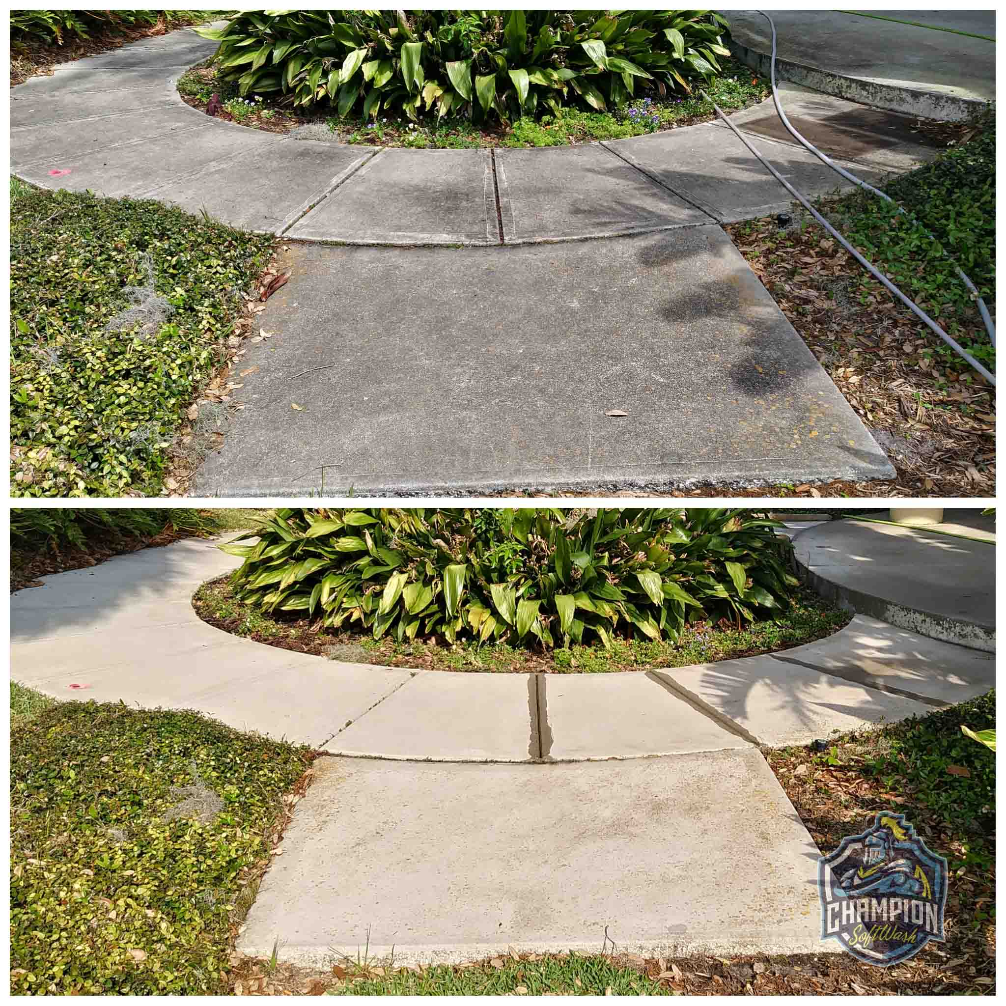 Before and After of Sidewalk on commercial property cleaned with softwashing, no high pressure. Sidewalk Cleaning in Florida